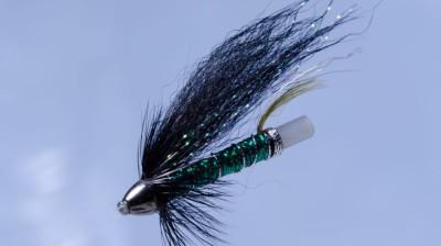 Green Brahan 2